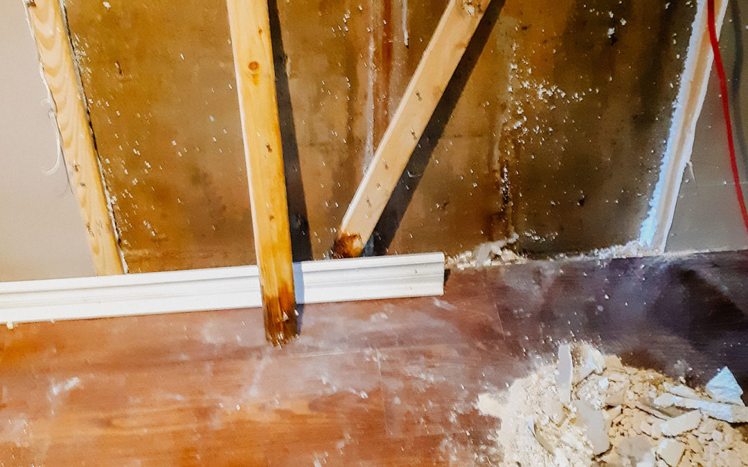 Why You Should Never use Styrofoam Insulation